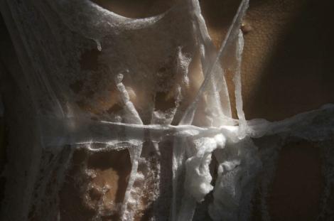 Dissolving garment- Pia Interlandi